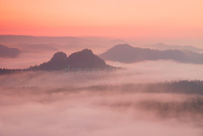 Fenomenalny czerwony brzask Mglisty brzask w piękni wzgórza Szczyty wzgórza wtykają out od mgłowego tła mgła są czerwoni obraz stock