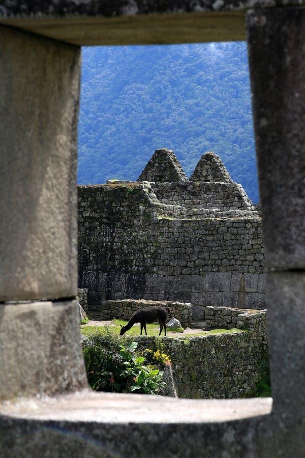 Fenster auf Machu Picchu lizenzfreies stockbild