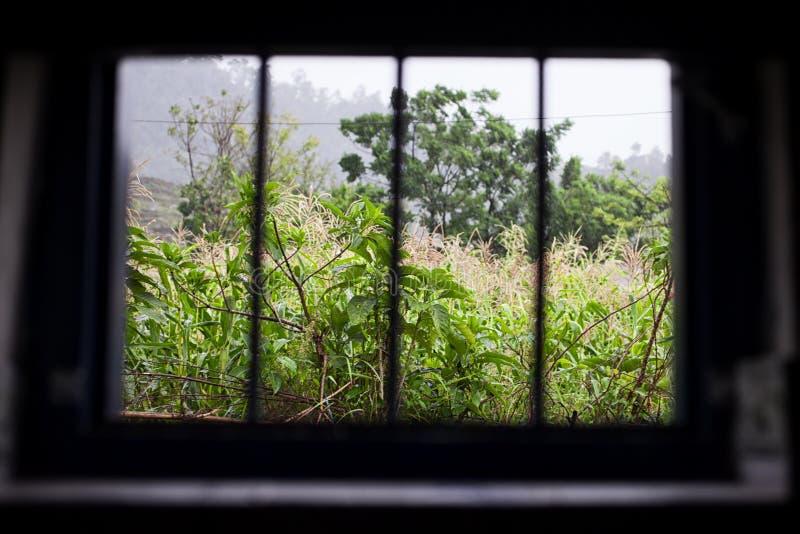 Fenster des Gefängnisses stockbild