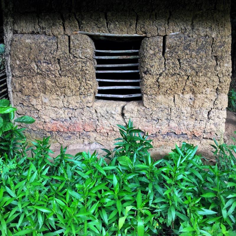 Fenster in einem Schlammhaus und -GRÜN sujanmap Iphone lizenzfreies stockbild