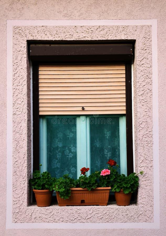 Fenster mit Blumen in den Gläsern lizenzfreies stockbild