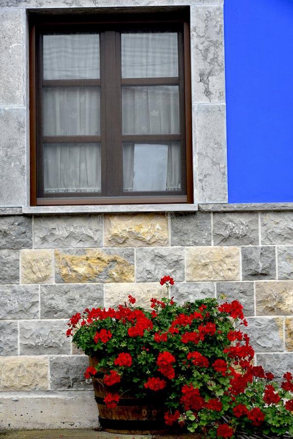 Fenster mit Blumen in der klassischen Fassade lizenzfreie stockbilder