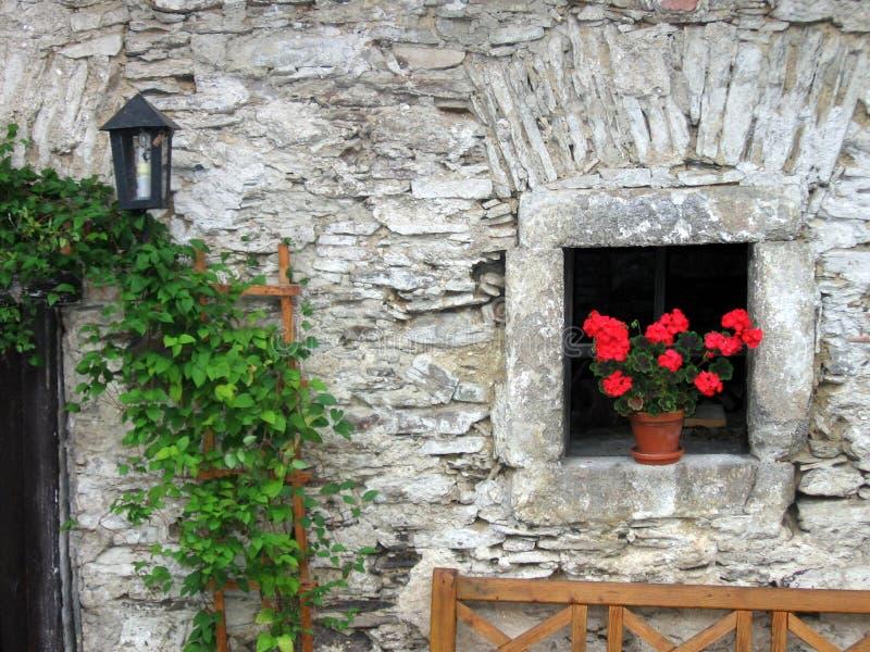 Fenster mit roten Blumen stockbilder