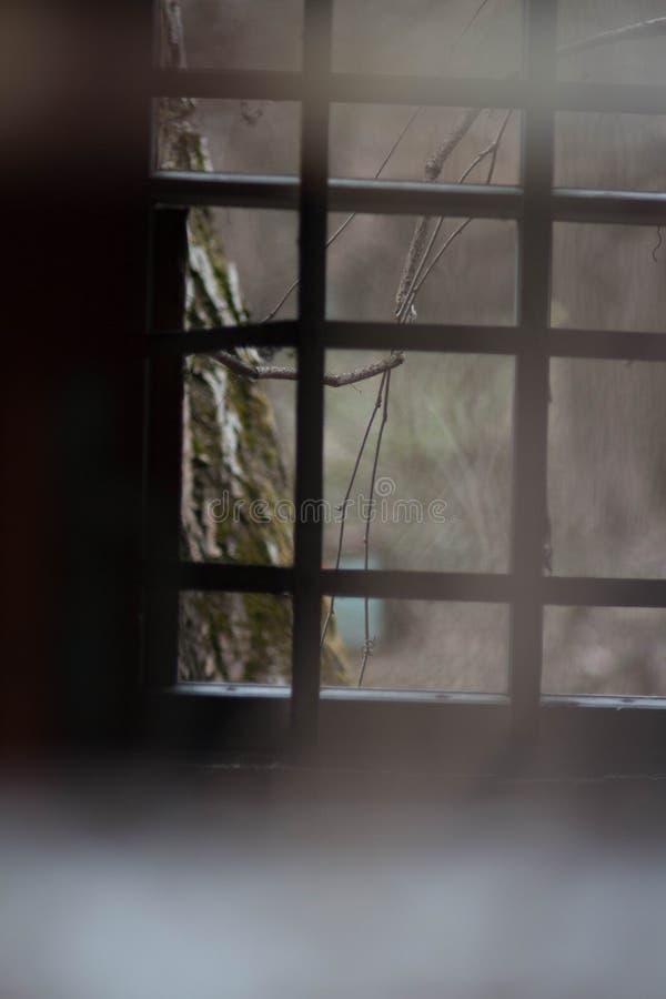 Fenster mit Stäben eines mittelalterlichen Gebäudes lizenzfreie stockfotos