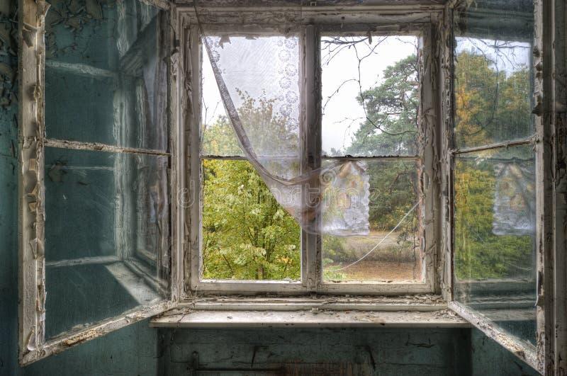 Fensterreflexion stockfotos