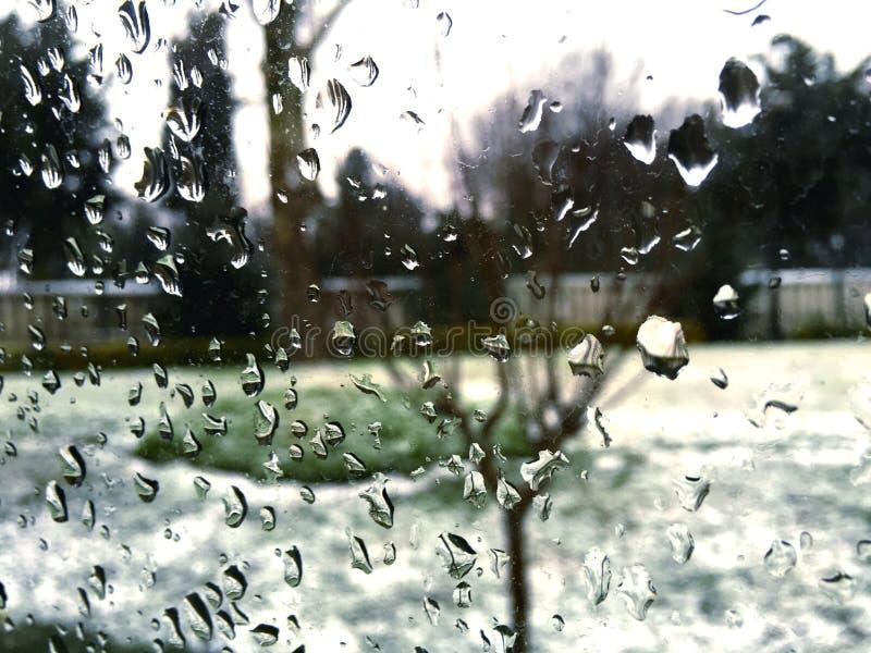 Fenstertropfen lizenzfreie stockbilder