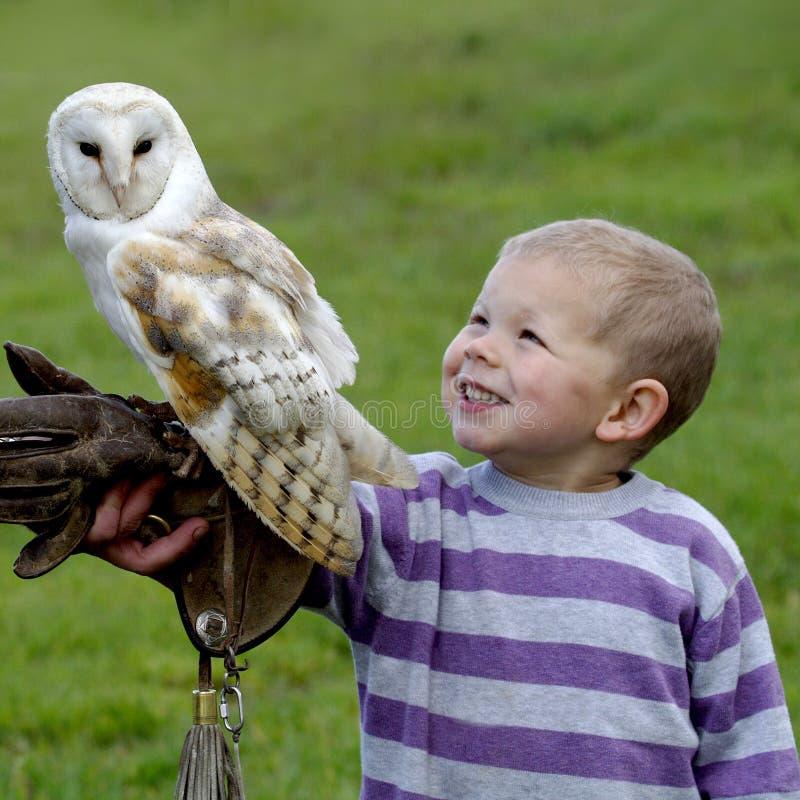 Free Fenton Bird Of Prey Centre Stock Photos - 2513233