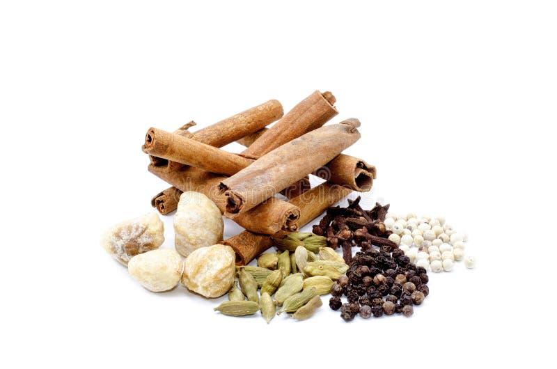Fenugrec, Candlenut, cannelle, clou de girofle, cardomom, blackpepper, whitepepper photos stock