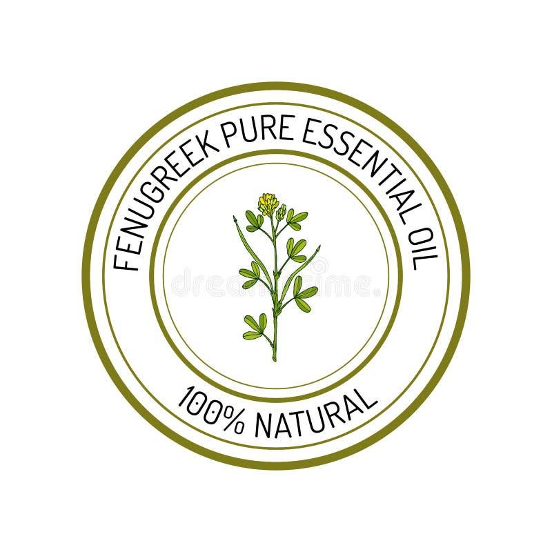 Fenugreek, essential oil label, aromatic plant. Vector illustration vector illustration
