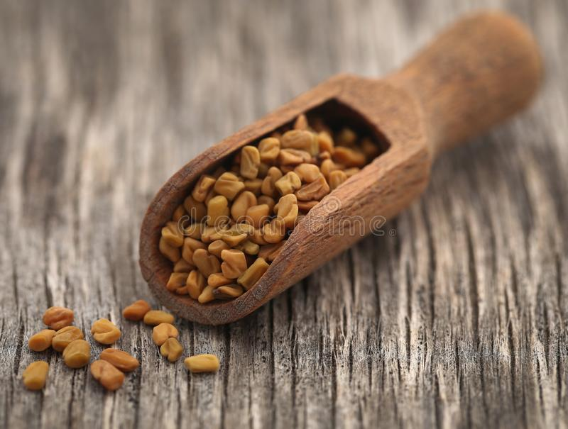 Fenugreek seeds royalty free stock image