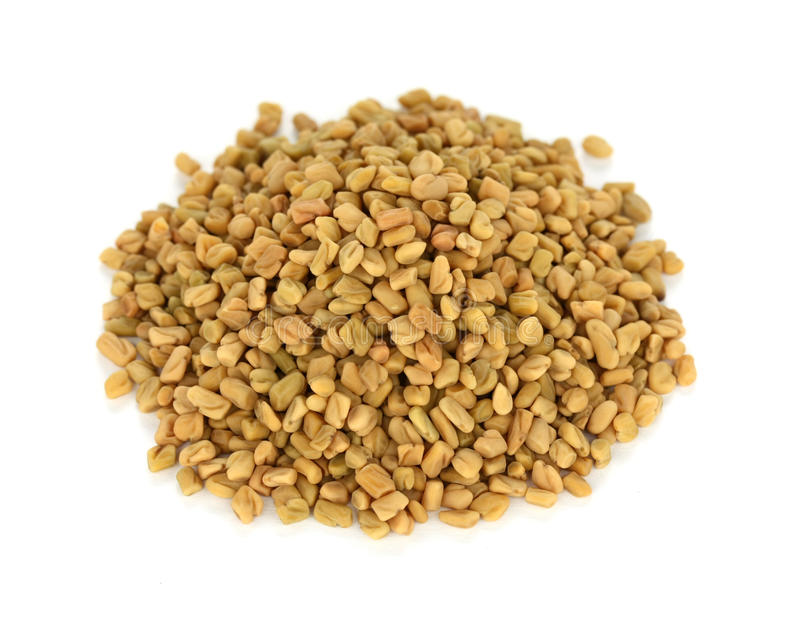 Fenugreek seeds , indian spice stock image