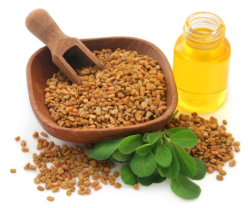 Fenugreek seeds with oil in bottle royalty free stock images