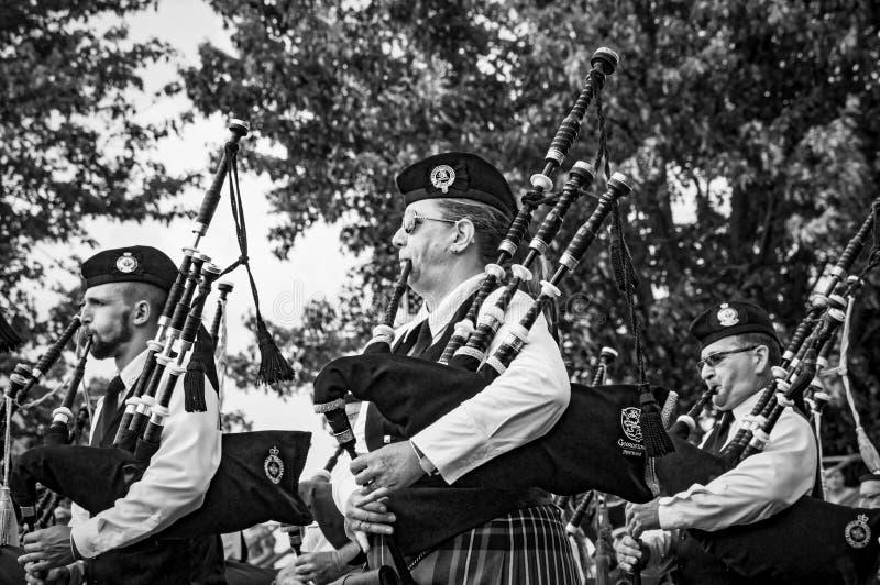 Fergus Ontario, Kanada - 08 11 2018: Pipblåsare av rören och valsarna sätter band paricipating i rörmusikbandstriden fotografering för bildbyråer
