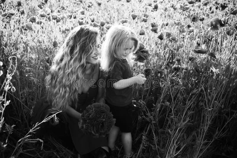 Feriado da família mulher e rapaz pequeno ou criança no campo da papoila fotografia de stock