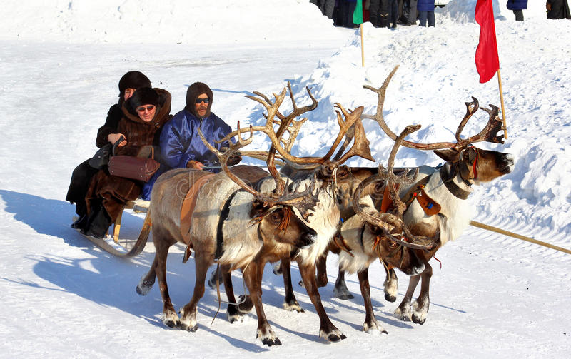 Feriado dos povos do norte em Novyy Urengoy, Rússia imagem de stock royalty free