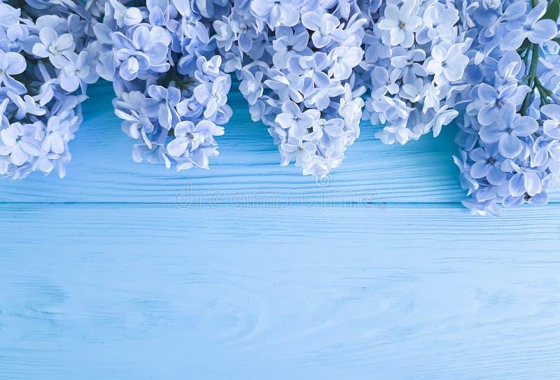 Feriado lilás do presente do dia de mães do aniversário do cumprimento da primavera do cargo da decoração da flor fresca bonita e foto de stock
