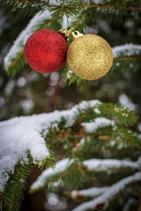 ferie för hälsningar för julsammansättning smyckar kall grön säsonger för fotopresentsred fotografering för bildbyråer