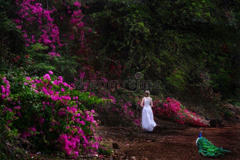 Ferien auf Hawaii Frau, die in botanischen Garten mit rosa Blumen und einem Pfau geht stockfoto