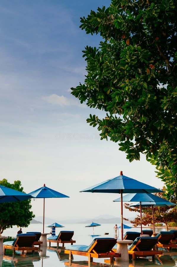 Ferien-Entspannungserholungsort-Strandbett in Unendlichkeitspool tropisches s lizenzfreies stockbild