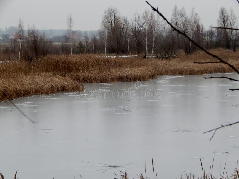 Fermata del lago battentesi fotografie stock