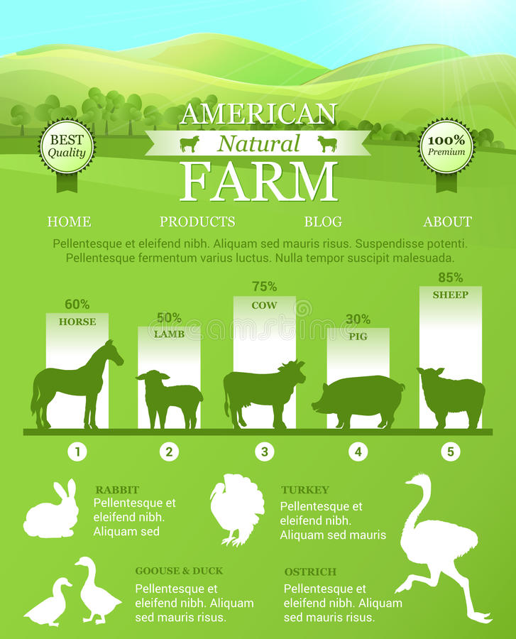 Ferme américaine Infographic avec le paysage lumineux, silhouettes d'animaux de ferme illustration de vecteur