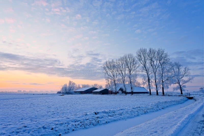 Ferme dans un horizontal blanc de l'hiver image stock