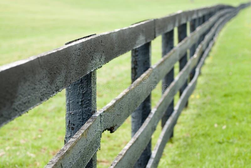Ferme de cheval du Kentucky image libre de droits