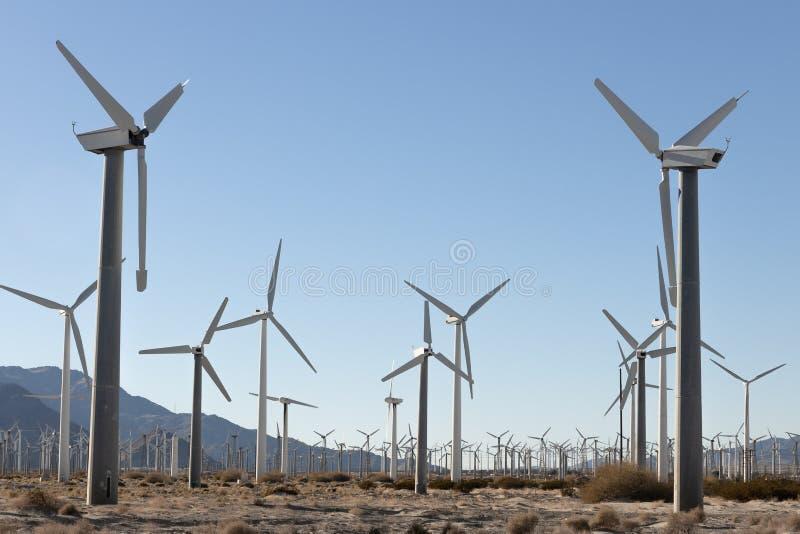 Ferme de moulin à vent de ressorts de paumes photographie stock