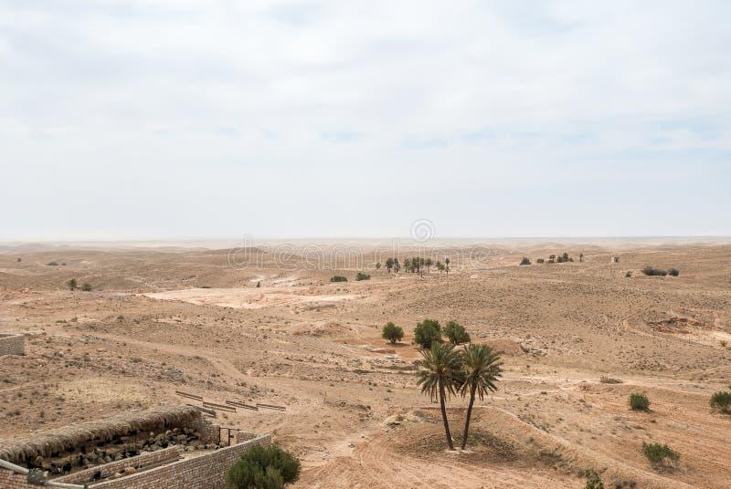 Ferme de moutons dans le désert photos libres de droits