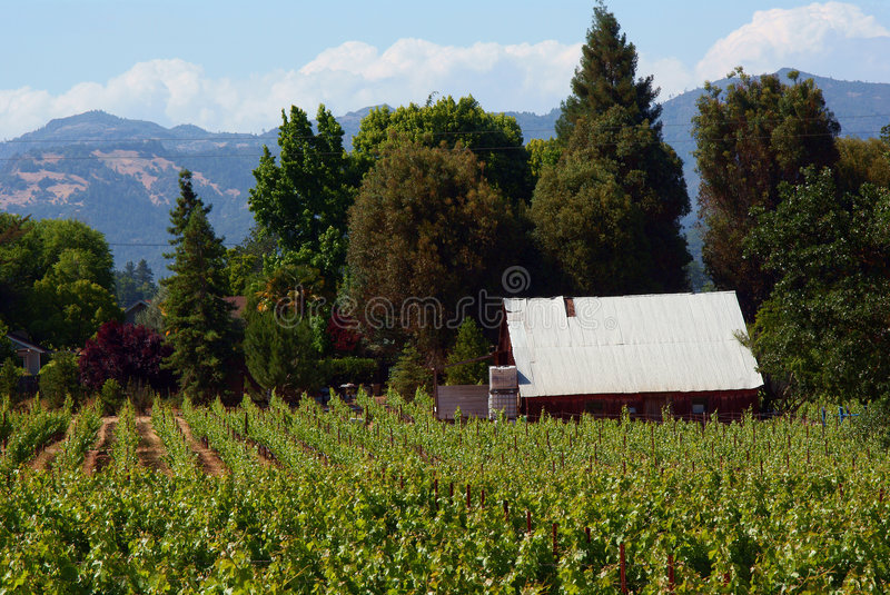 Ferme de Napa Valley images stock