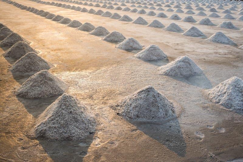 Ferme de sel au coucher du soleil image libre de droits