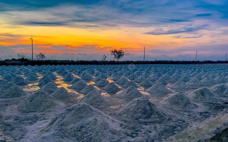 Ferme de sel pendant le matin avec le ciel de lever de soleil Sel organique de mer ?vaporation et cristallisation de l'eau de mer images stock