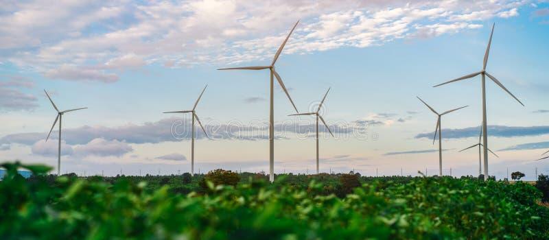 Ferme de turbine de vent, concept d'énergie éolienne image libre de droits