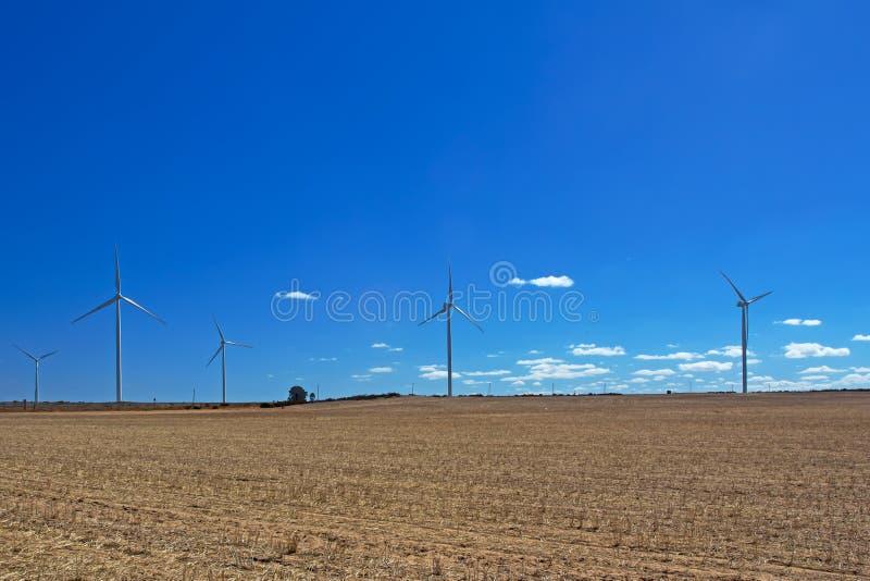 Ferme de turbine de vent dans le domaine sec photos stock