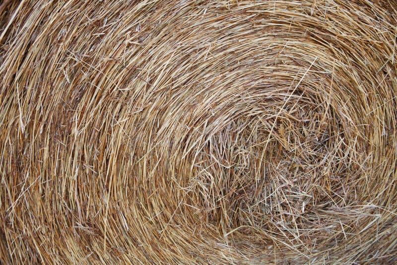 Ferme-macro de Hay Roll On A image libre de droits