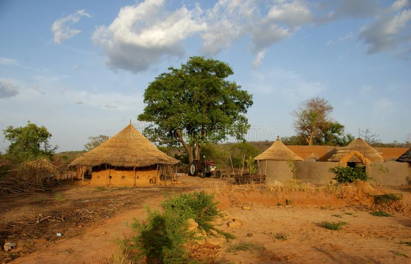 Ferme organique dans le sec au nord du Ghana photo libre de droits