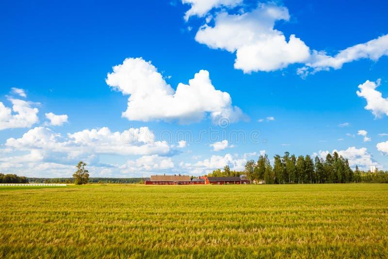 Download Ferme Rouge En Finlande Rurale Photo stock - Image du grange, people: 76085988