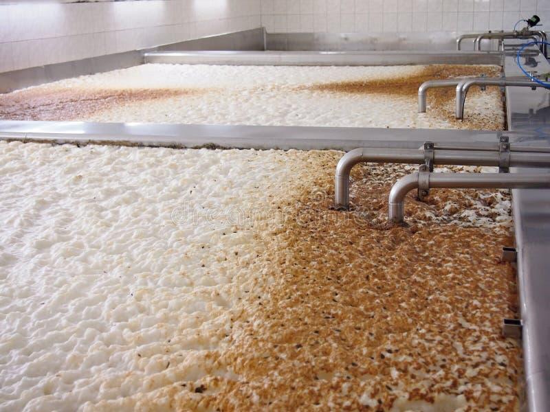 Fermentazione di una birra fotografie stock libere da diritti