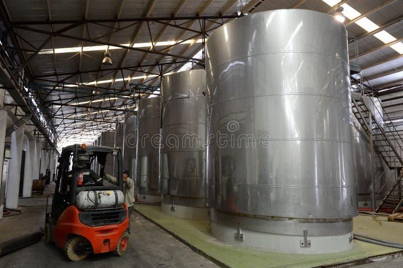 Fermentazione in tini dell'acciaio inossidabile per vino alla cantina Santa Rita immagini stock libere da diritti