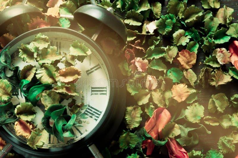 Fermez à clef sur les fleurs sèches, fond coloré, temps et les souvenirs changent en conséquence images libres de droits