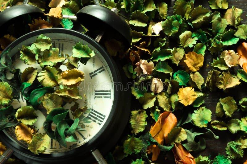 Fermez à clef sur les fleurs sèches, fond coloré, temps et les souvenirs changent en conséquence image libre de droits