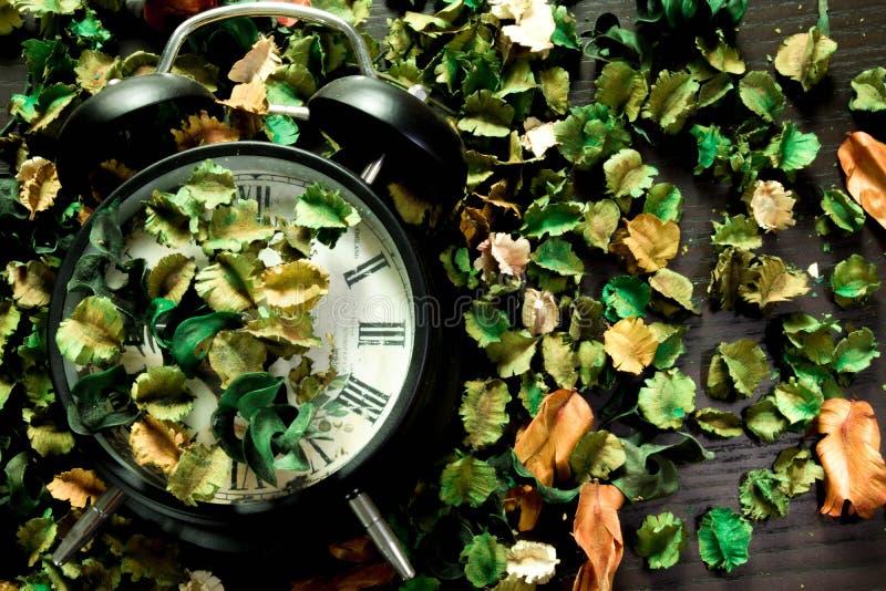 Fermez à clef sur les fleurs sèches, fond coloré, temps et les souvenirs changent en conséquence images stock