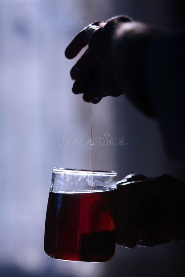 Fermez une main tenant la ficelle d'un teabag à l'intérieur d'une tasse de thé transparente dans le noir images libres de droits