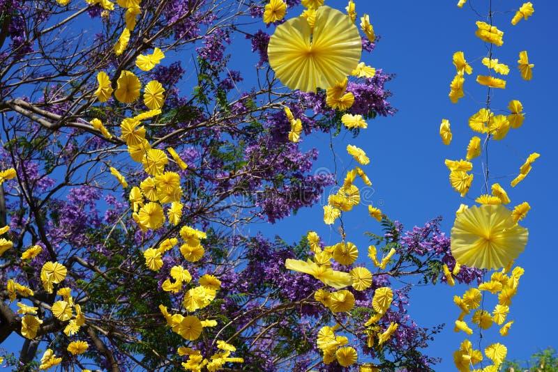 Fermez-vous avec les fleurs sp?cifiques de la Mad?re photos libres de droits