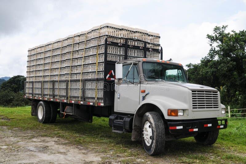 Fermez-vous d'un camion avec des cages de poulet là-dessus photos stock