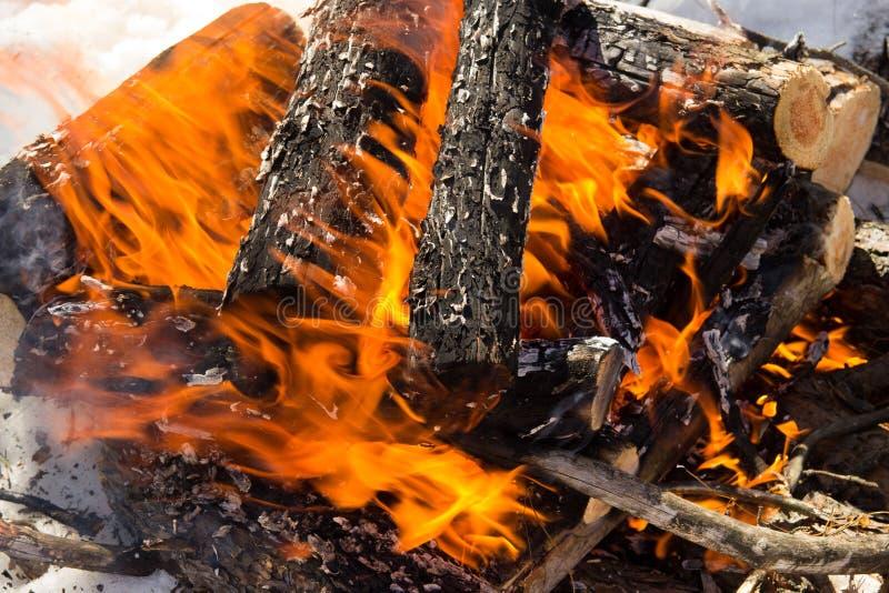 Fermez-vous d'un feu photo stock