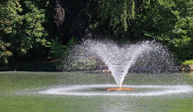 Fermez-vous d'une fontaine dans un lac en parc public photographie stock