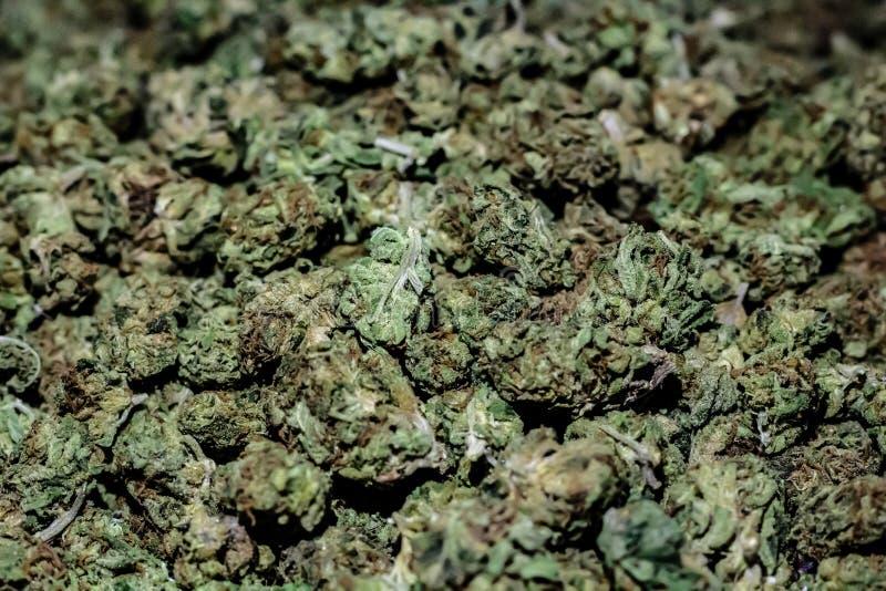 Fermez-vous d'une grande pile de la marijuana d'une chevelure vert clair et rouge b photo libre de droits