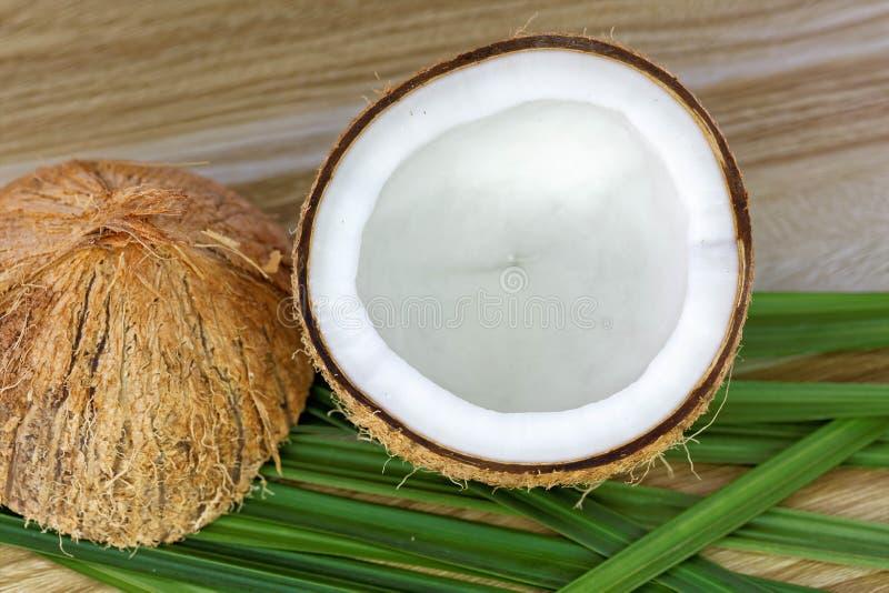 Fermez-vous d'une noix de coco image libre de droits