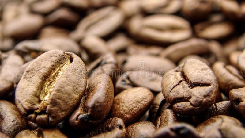 Fermez-vous de beaucoup de grains de café rôtis photographie stock libre de droits
